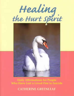 The book cover of Healing The Hurt Spirit